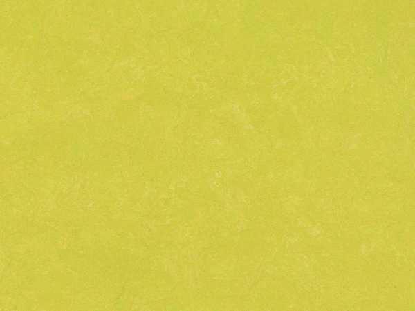 Linoleum Apple Fliese
