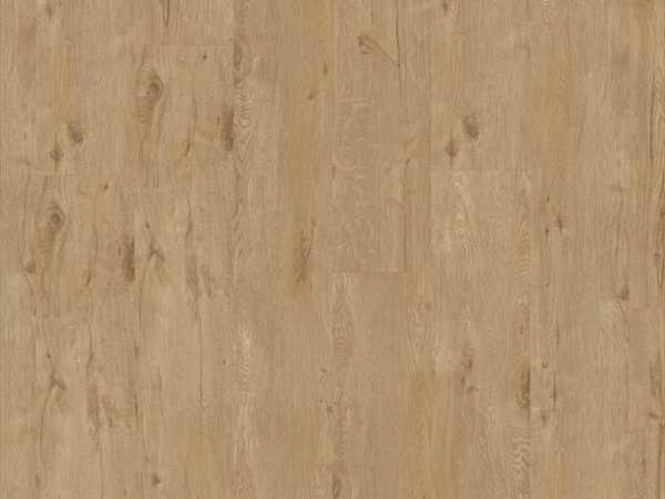 Designboden iD Inspiration 55 PLUS Alpine Oak Natural Landhausdiele