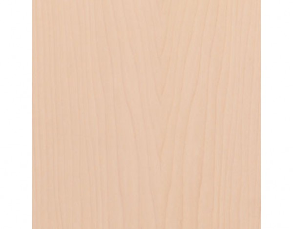 Wand- und Deckenleiste Ahorn kanadisch hell 049 Echtholzfurnier
