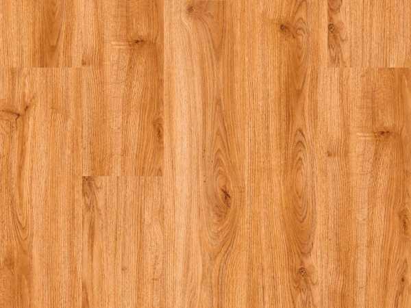 Vinylboden wood Go Europäische Eiche Glue-down Landhausdiele