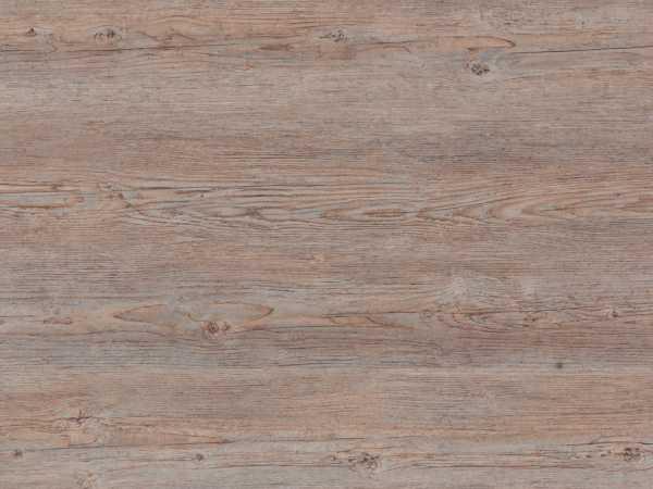 Designboden Starfloor Click 30 Brushed Pine Grey Landhausdiele