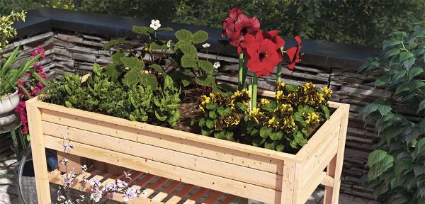 Ratgeber Hochbeete Richtig Anlegen Und Bepflanzen