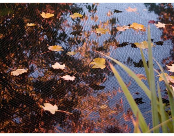 Teich Laubschutznetz PondNet