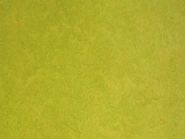 Linoleum Fertigboden Color Lime