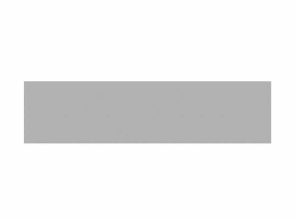 Einzelprofil BOARD XL titangrau
